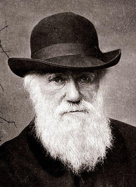 Charles Darwin et son expédition sur l'HMS Beagle