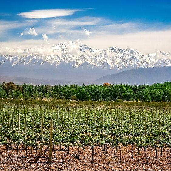 Escapade au Chili depuis Mendoza