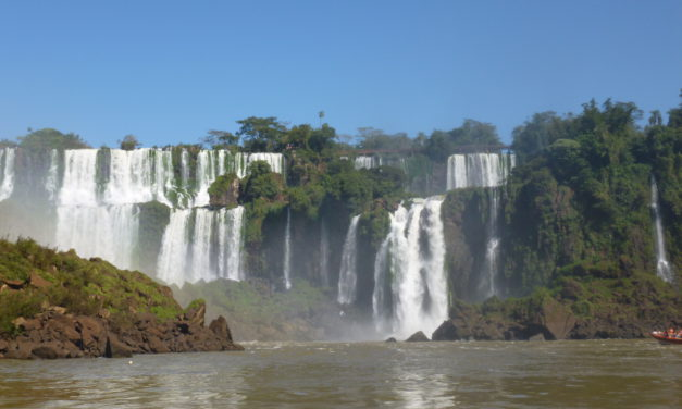 La ruta de la selva à Iguazú !
