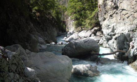 Nature : Actualisation du programme Senderos de Argentina