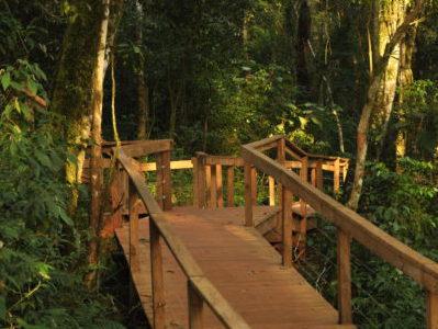 Moconá Lodge : un havre de paix en pleine forêt