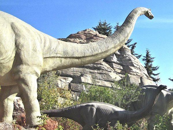 À la découverte des dinosaures en Patagonie !