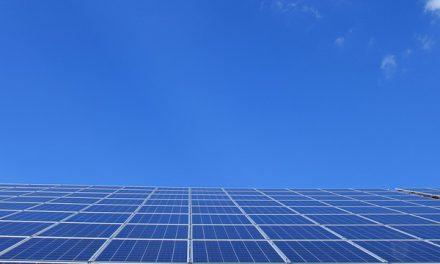 Les meilleures initiatives éco-responsables de Buenos Aires