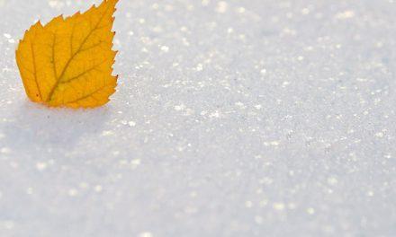 Activités de neige à Ushuaïa