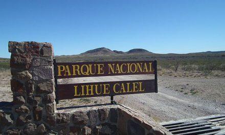 En pleine Pampa, le Parc National Lihué Calel
