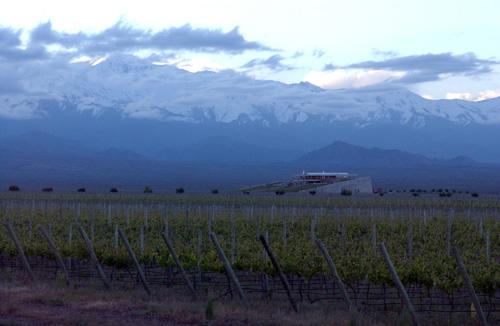 Voyage à la découverte de la gastronomie et du vignoble de Mendoza !