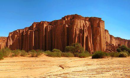 À voir en Argentine : le Parc National de Talampaya