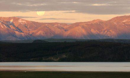 D'où vient le nom de la région de la Patagonie?