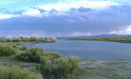 à voir – à faire Mendoza : réserves naturelles protégeés