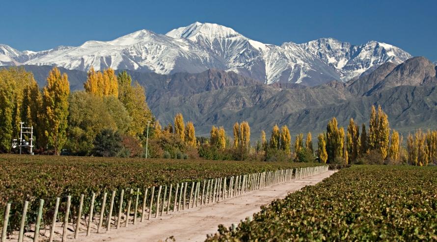La route des vins dans la province de Mendoza