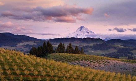 Mendoza et sa région en quelques jours.