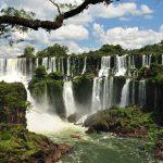 Voyage dans le Nord-Est : Chutes d'Iguazu et esteros del Ibera
