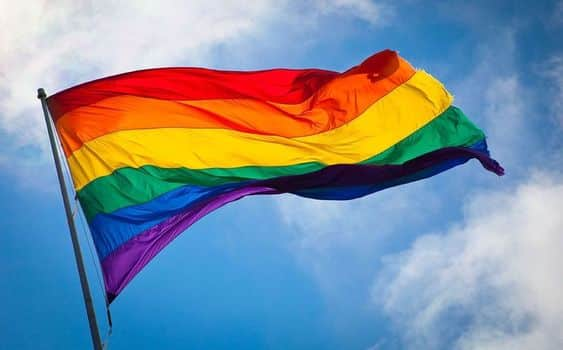 Drapeau queer  journée internationale contre l'homophobie