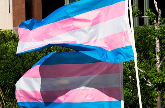 drapeau trans  journée internationale contre l'homophobie